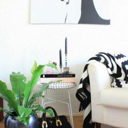 #urbanjunglebloggers 1 plant 3 stylings