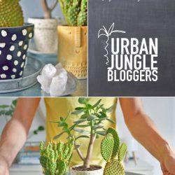 #urbanjunglebloggers secrets