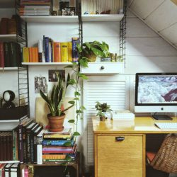#urbanjunglebloggers plants on the workplace