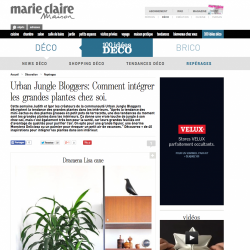 Urban Jungle Bloggers sélection Grandes Plantes Marie Claire Maison
