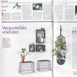 Urban Jungle Bloggers in 1 million Dutch newspapers from Wegener Groep