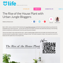 Urban Jungle Bloggers on AO Life - The Rise of the House Plant
