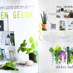 Urban Jungle Bloggers in Home and Garden NL
