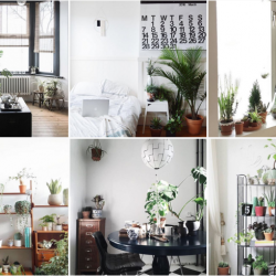 Urban Jungle Bloggers - Favorite Instagram account on Roomed.nl