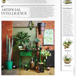 Warehouse Home - Urban Jungle Bloggers june 2015