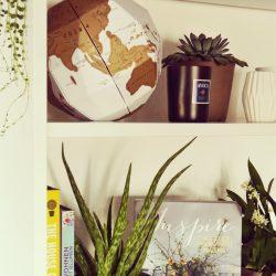 #urbanjungleblogger plant shelfie
