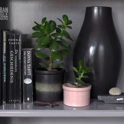 #urbanjunglebloggers plant shelfie