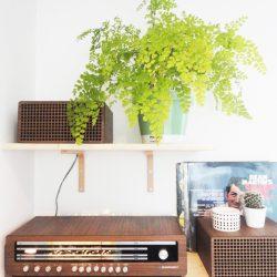 #urbanjungleblogges plant shelfie