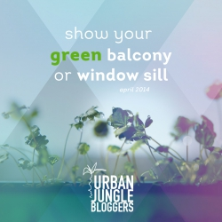 April 2014 Show your green balcony or windowsill