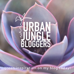 January 2014 Green social inspiration