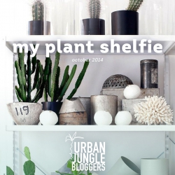 October 2014 My Plant Shelfie