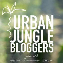 September 2013 Presenting our Urban Jungles