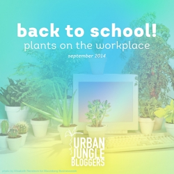 September 2014 Back to school – Plants on the workplace