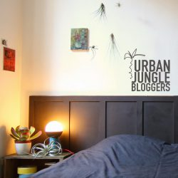 urbanjunglebloggers, green bedroom