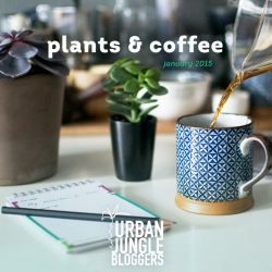 January 2015: Plants & Coffee (or tea)