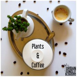 urbanjunglebloggers, coffee, plants