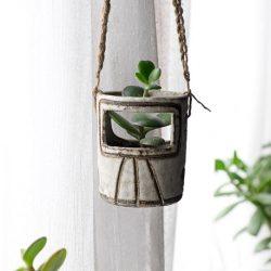 urbanjunglebloggers, plants, hanging planters