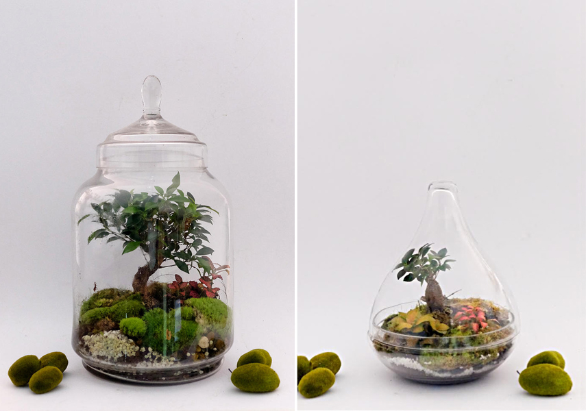 Green Solutions For Low-Maintenance Plant Care via urbanjunglebloggers.com