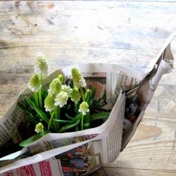 Urban Jungle Bloggers: Happy Green Easter