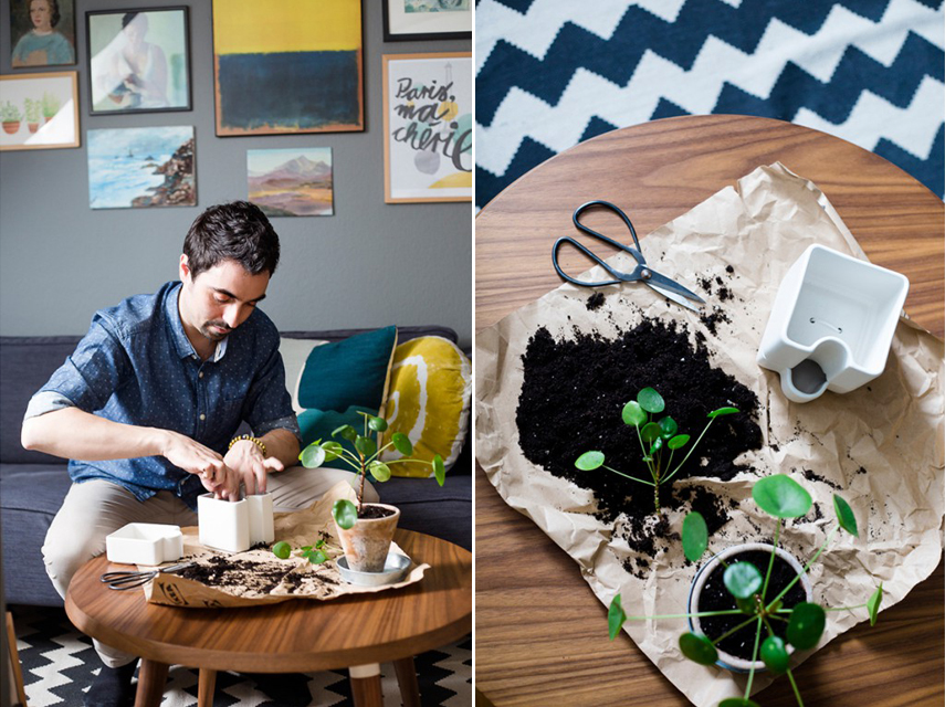 Go Green with IKEA and Urban Jungle Bloggers