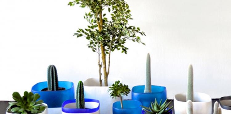 Urban Jungle Bloggers Tina Frey Designs