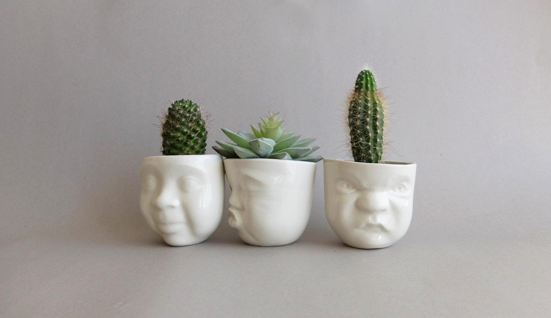 Cacti love story 2