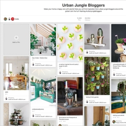 Urban Jungle Bloggers Pinterest