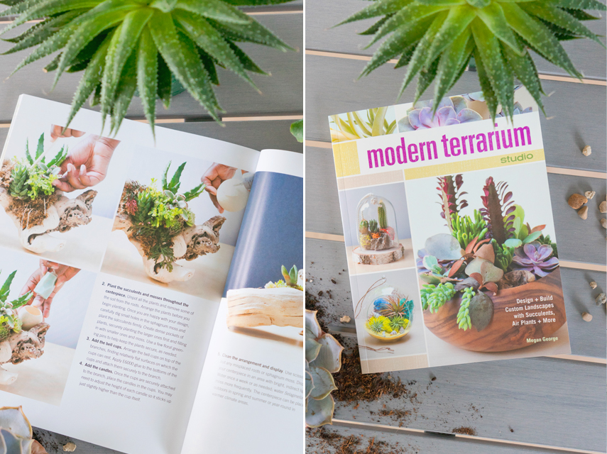 Modern Terrarium book review