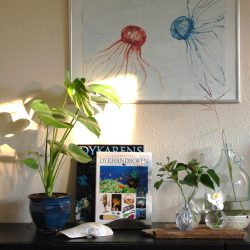 Urban Jungle Bloggers: Plants & Art