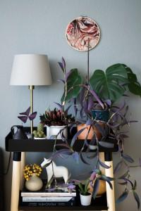 urbanjunglebloggers, plantshelfie, #plantshelfie