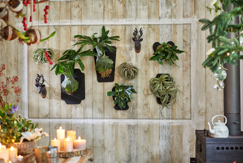 festive decor ideas with plants