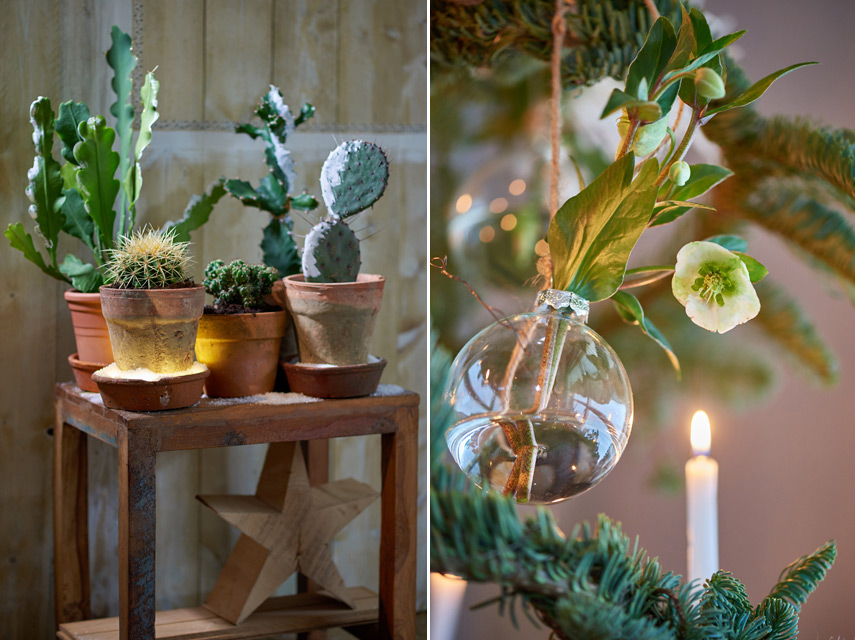 Urban Jungle Bloggers Festive Decor Ideas with plants - Unexpected Wild