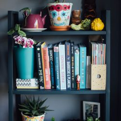 Urban Jungle Bloggers #plantshelfie