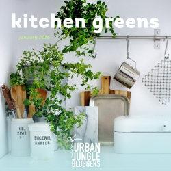 Urban Jungle Bloggers Kitchen Greens