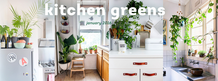 Urban Jungle Bloggers - Kitchen Greens