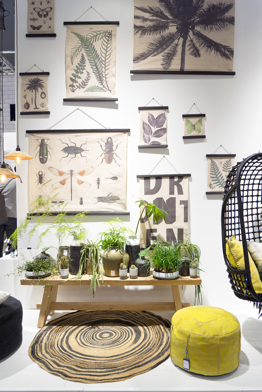 Plant Trends From Maison Objet 2016 In Paris