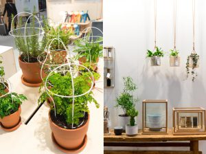 Urban Jungle Bloggers - Plant Trends from Maison & Objet 2016 in Paris
