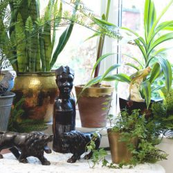 Urban Jungle Bloggers in February: Jungle Animals