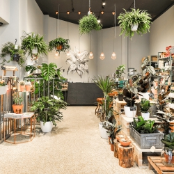 Urban Jungle Bloggers: De Balkonie Amsterdam