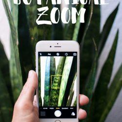 urbanjunglebloggers, botanical zoom