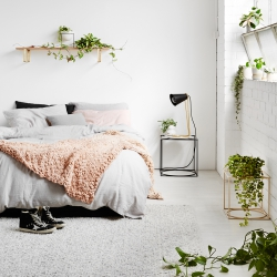 Ivy Muse Homebody collection via Urban Jungle Bloggers