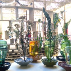 Urban Jungle Bloggers in April: Plants & Glass