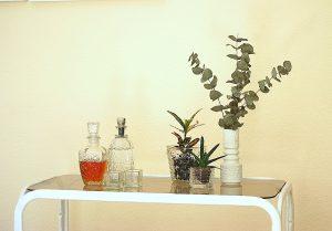 urbanjunglebloggers, plants and glass