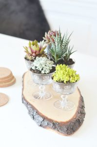 urbanjunglebloggers, planty table setting
