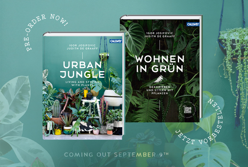 Urban Book Cover Ideas ~ Urban jungle book get your copy now