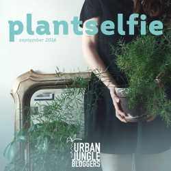 Urban Jungle Bloggers in September: Plantselfie