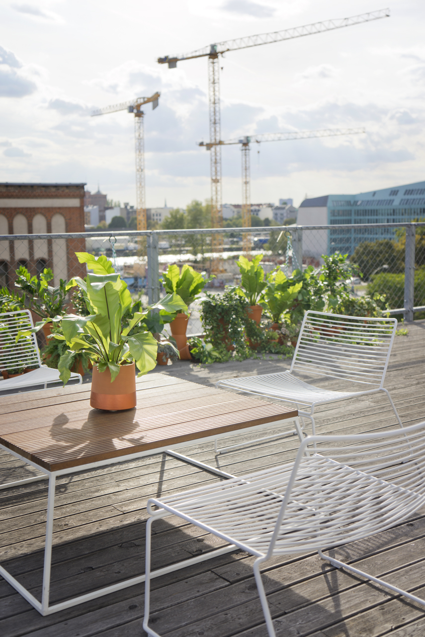 Urban Jungle Bloggers Rooftop dinner Berlin plant styling