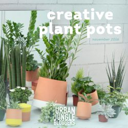 Urban Jungle Bloggers in November 2016: Creative Plant Pots