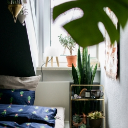 Urban Jungle Bloggers x Urban Outfitters