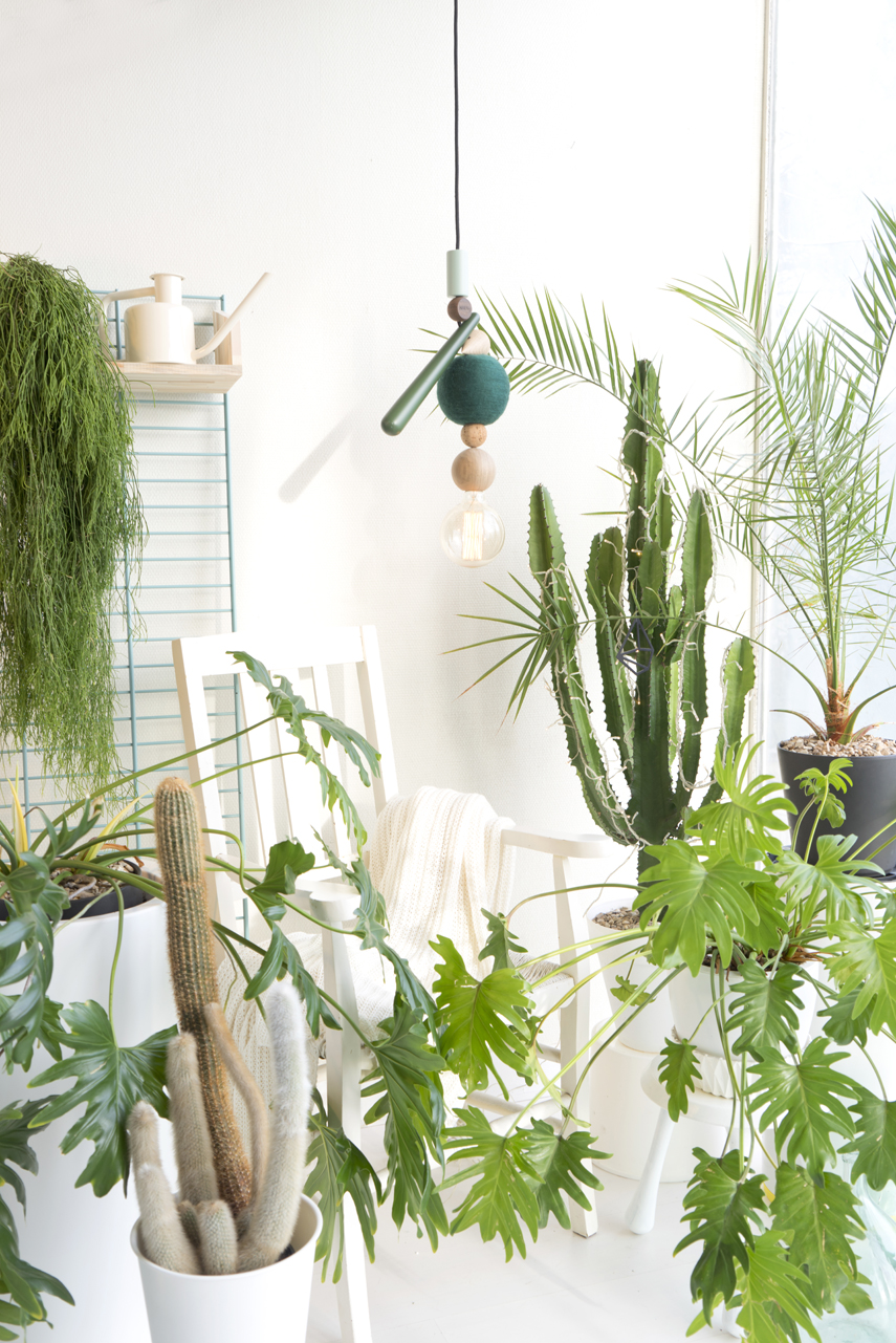 Urban Jungle Bloggers x HAENG pendant light